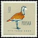 Cl: Great Bustard (Otis tarda) <<drop>>  SG 1201 (1960) 20