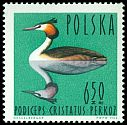 Cl: Great Crested Grebe (Podiceps cristatus) <<perkoz>>  SG 1492 (1964) 190