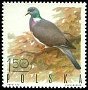 Cl: Common Wood-Pigeon (Columba palumbus) SG 1972 (1970) 15