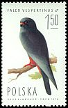 Cl: Red-footed Falcon (Falco vespertinus) SG 2344 (1975)