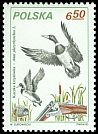 Cl: Mallard (Anas platyrhynchos) <<krzyz&oacute;wka>> (Repeat for this country)  SG 2756 (1981) 110