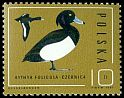 Cl: Tufted Duck (Aythya fuligula) <<czernica>>  SG 3013 (1985) 35