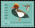 Cl: Red-crested Pochard (Netta rufina) <<helmiatka>>  SG 3016 (1985) 110