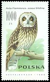 Cl: Short-eared Owl (Asio flammeus) <<sowa blotna>>  SG 3323 (1990) 75