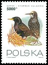 Cl: European Starling (Sturnus vulgaris) <<szpak>>  SG 3489 (1993) 175