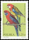 Cl: Crimson Rosella (Platycercus elegans)(Out of range)  SG 4124 (2004)