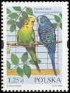 Cl: Budgerigar (Melopsittacus undulatus)(Out of range)  SG 4126 (2004)