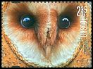Cl: Barn Owl (Tyto alba)(Repeat for this country)  new (2015)  [10/9]