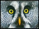 Cl: Great Grey Owl (Strix nebulosa) new (2015)  [10/9]