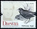 Cl: Large Ground-Finch (Geospiza magnirostris)(Out of range)  SG 3643 (2009)  [6/5]