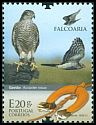 Cl: Eurasian Sparrowhawk (Accipiter nisus) new (2013)  [8/19]