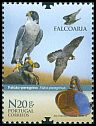 Cl: Peregrine Falcon (Falco peregrinus)(Repeat for this country)  new (2013)  [8/19]