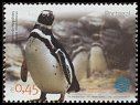 Cl: Magellanic Penguin (Spheniscus magellanicus) <<Pinguim-de-Magalhaes>> (Out of range)  SG 3078 (2004)  [2/22]
