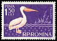Cl: Great White Pelican (Pelecanus onocrotalus)(Repeat for this country)  SG 2557 (1957) 250
