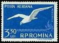 Cl: Black-headed Gull (Larus ridibundus) <<Pescarus>>  SG 2558 (1957) 425