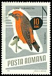 Cl: Red Crossbill (Loxia curvirostra) <<Forfecuta>>  SG 3370 (1966) 50