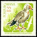 Cl: Egyptian Vulture (Neophron percnopterus) <<Hoitar alb>>  SG 3445 (1967) 110