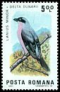 Cl: Lesser Grey Shrike (Lanius minor) SG 4800 (1983) 175