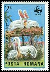 Cl: Dalmatian Pelican (Pelecanus crispus)(Repeat for this country)  SG 4902 (1984)  [3/7]