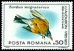 Cl: American Robin (Turdus migratorius)(Out of range)  SG 4936 (1985)