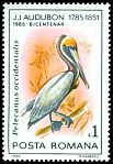 Cl: Brown Pelican (Pelecanus occidentalis)(Out of range)  SG 4937 (1985)