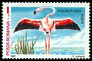 Cl: Greater Flamingo (Phoenicopterus roseus) SG 5141b2 (1987)