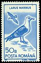 Cl: Great Black-backed Gull (Larus marinus) SG 5323 (1991)