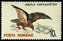 Cl: Golden Eagle (Aquila chrysaetos)(Repeat for this country)  SG 5511 (1993)
