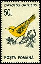 Cl: Eurasian Golden Oriole (Oriolus oriolus)(Repeat for this country)  SG 5515 (1993)