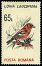 Cl: White-winged Crossbill (Loxia leucoptera) SG 5516 (1993)