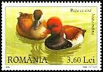 Cl: Red-crested Pochard (Netta rufina) <<Rata cu ciuf>>  SG 6812 (2007)  [4/19]