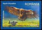 Cl: Golden Eagle (Aquila chrysaetos) <<Acvila de munte>>  SG 6984 (2009)  [6/22]