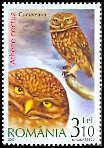 Cl: Little Owl (Athene noctua) <<Cucuveaua>>  SG 6789 (2007)  [4/8] I have 3 spare [1/21]