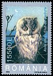 Cl: Northern Long-eared Owl (Asio otus) <<Ciuf de padure>>  SG 6353 (2003)  I have 2 spare [1/38]