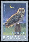Cl: Short-eared Owl (Asio flammeus) <<Ciuf de c&acirc;mp>>  SG 6352 (2003)  I have 2 spare [1/38]