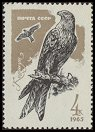 Cl: Red Kite (Milvus milvus) SG 3220 (1965) 8