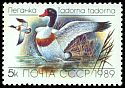 Cl: Common Shelduck (Tadorna tadorna) SG 6011 (1989) 0