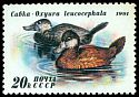 Cl: Ruddy Duck (Oxyura jamaicensis)(Out of range)  SG 6266 (1991)