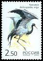 Cl: Demoiselle Crane (Anthropoides virgo) SG 7113 (2002)