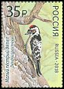 Cl: Lesser Spotted Woodpecker (Dendrocopos minor)(Repeat for this country)  new (2018)  [11/38]
