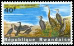 Cl: African Darter (Anhinga rufa)(Repeat for this country)  SG 106 (1965) 40 [6/39]