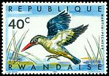 Cl: Woodland Kingfisher (Halcyon senegalensis) <<Martin-p&ecirc;cheur>>  SG 240 (1967) 8