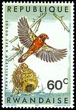 Cl: Red-billed Quelea (Quelea quelea) <<Travailleur &agrave; bec rouge>>  SG 241 (1967) 8