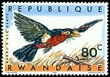 Cl: Double-toothed Barbet (Lybius bidentatus) <<Barbu a bec dente>>  SG 242 (1967) 8