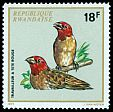 Cl: Red-headed Quelea (Quelea erythrops) <<Travailleur &agrave; t&ecirc;te rouge>>  SG 476 (1972) 45