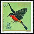 Cl: Black-headed Gonolek (Laniarius erythrogaster) <<Gonolek a dessous rouge>>  SG 477 (1972) 150