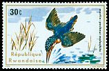 Cl: Malachite Kingfisher (Alcedo cristata) <<Martin-p&ecirc;cheur malachite>>  SG 661 (1975) 10