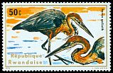 Cl: Goliath Heron (Ardea goliath) <<Heron goliath>>  SG 662 (1975) 10