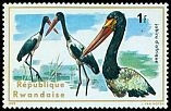Cl: Saddle-billed Stork (Ephippiorhynchus senegalensis) <<Jabiru d'Afrique>>  SG 663 (1975) 10