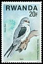 Cl: Black-shouldered Kite (Elanus caeruleus) <<Elanion blanc>>  SG 839 (1977) 60